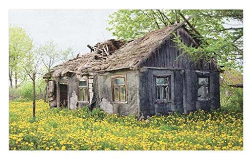 Lunarable Wooden Doormat, Old Barn Farmhouse Countryside Cottage House in Garden Rural Vintage Picture, Decorative Polyester Floor Mat with Non-Skid Backing, 30