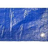 Toldo reforzado gramaje 90 grs, 4 x 6 m, color azul - Catral 560113