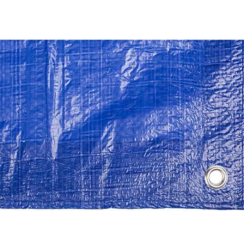 Toldo reforzado gramaje 90 grs, 6 x 10 m, color azul - Catral 560115