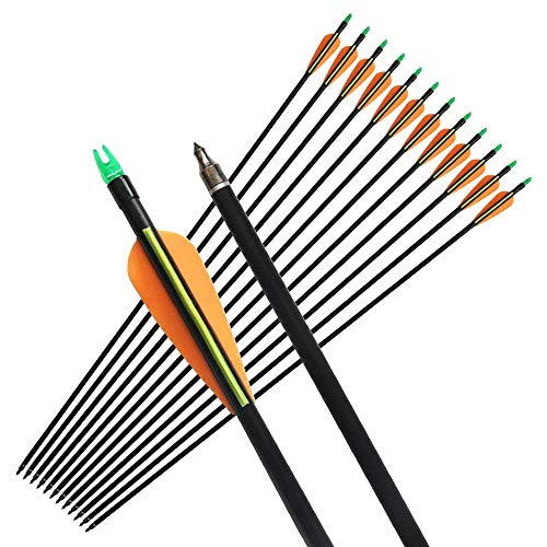 Mosogos 12Pcs 31' Fiberglass Arrows with Replaceable Screw-in Point Archery Hunting Target Practice Arrow for Compound and Recurve Bow