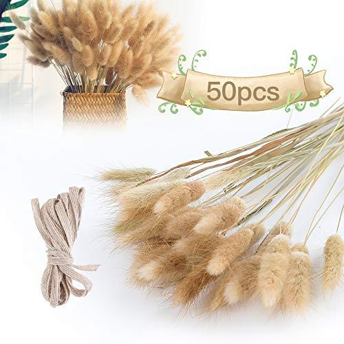RayE 50 Stück Trockenblumen Pampasgras Deko, Pampasgras Getrocknet Groß Natur Strauß Blumen Gräser Blumenstrauß Pampas Deko für Hochzeit Innendekoration Schlafzimmer Wohnzimmer