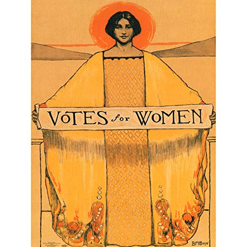Wee Blue Coo Votes for Women Suffrage Unframed Wall Art Print Poster Home Decor Premium