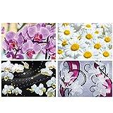 GREAT ART® 4er Set XXL Poster Motive – Blütenzauber –