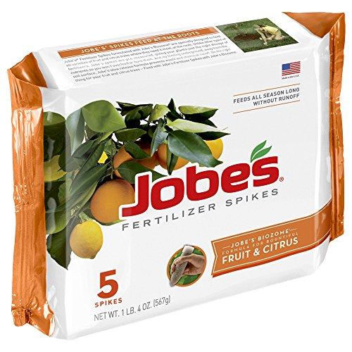 Jobe's 01002 Lot de 5 pointes d'engrais pour fruits et agrumes