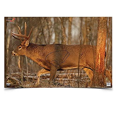 Birchwood Casey 37481 EZE-Scorer Deer 23x35