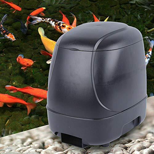 Kaibrite Distributeur automatique de nourriture pour aquarium, étang, poisson, minuteur, étang, ferme, feeder, 10 l