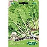 Germisem Perpetual Spinach Semillas de Acelgas 5 g