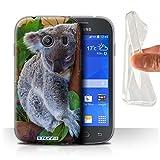 Hülle Für Samsung Galaxy Ace Style Wilde Tiere Koala