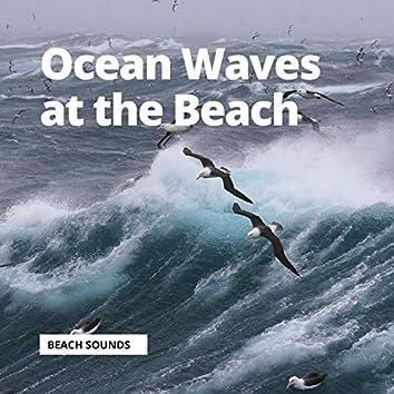 Ocean Waves at the Beach