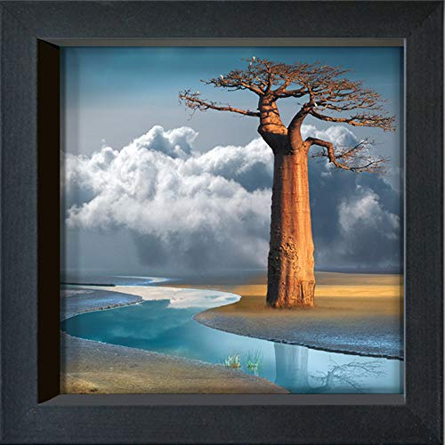 International Graphics - Postal enmarcada - Maïlo / M-L Vareilles - ''Le baobab du lac Natron''- 16 x 16 cm - Marco disponible en 4 colores - Color del marco: Negro - Serie LUNA
