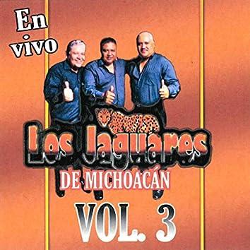 En Vivo, Vol. 3