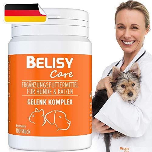 BELISY  Gelenk Komplex  Gelenktabletten für Hunde & Katzen - 100 Tabletten mit Teufelskralle, Grünlippmuschel, MSM & Glucosamin - Hergestellt & Laborgeprüft in Deutschland
