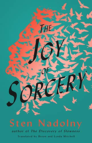 The Joy of Sorcery (English Edition)