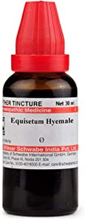 Willmar Schwabe Homeopathy Equisetum Hyemale Mother Tincture Q (30 ML) by Qualityexport