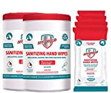 My-Shield Sanitizing Hand Wipes - Alcohol-Free, Long-Lasting Antimicrobial Protection. Kills 99.999% of Germs. Infused with Aloe Vera (Two 80-Count, Four 20-Count)…