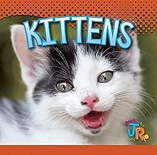 Kittens (Baby Animals)
