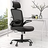 【2021 Newer Model】Office Chair, Ergonomic Desk Chair with Adjustable Lumbar Support & Seat Height, High Back Mesh Computer Chair with Flip-up Armrests-BIFMA Passed Task Executive Chair for Home Office