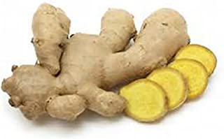 Ginger Root, Fresh, Whole, NON GMO, Organic, 2 Ounces, Simply Delicious