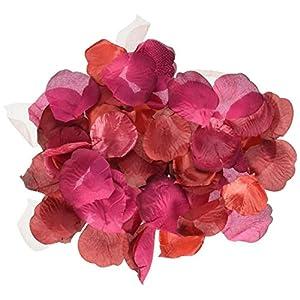 Darice RC-7209-69 Decorative Satin Loose Rose Petals, Burgundy, 100-Pack