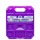 Long Lasting Ice Pack for Coolers, Lunch Boxes, Camping, Fishing and More, Small Reusable Ice Pack, Tundra Series by Arctic Ice , Purple