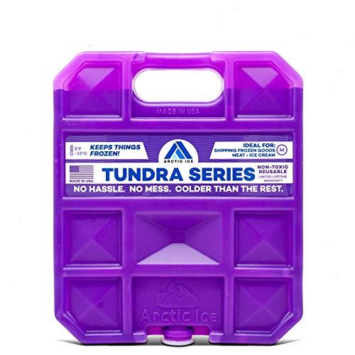 ARCTIC Ice Tundra Série réutilisable Cooler Lot, Mixte, 1205, Violet