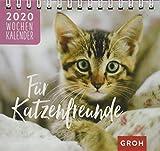 Für Katzenfreunde 2020 - Groh Redaktionsteam