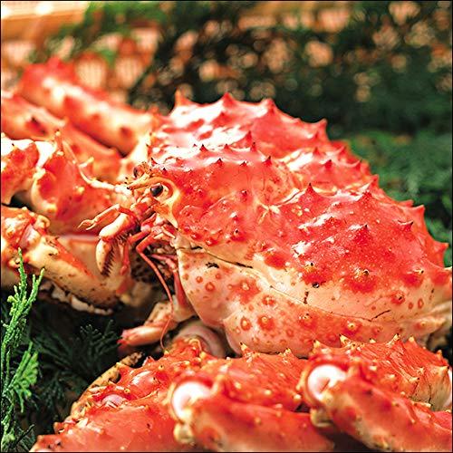 残暑見舞い 敬老の日 ギフト プレゼント タラバガニ 姿 アラスカ産 カニ 特大 (1尾 3.0kg) たらば蟹 タラバ蟹 ボイル 北海道 お取り寄せ