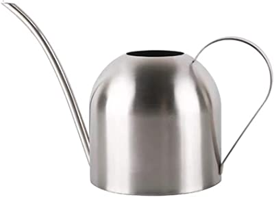 YISSN Small Watering Can for Indoor Office Stainless Steel Long Spout, 15oz/450ml