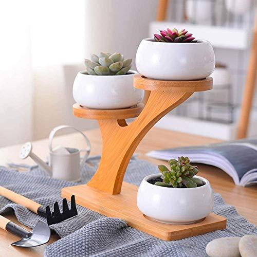 GYC Macetas de cerámica para jardín, macetas Decorativas Modernas para Plantas suculentas, 3 macetas de bonsái con Estante de bambú de 3 Niveles, Manualidades Decorativas