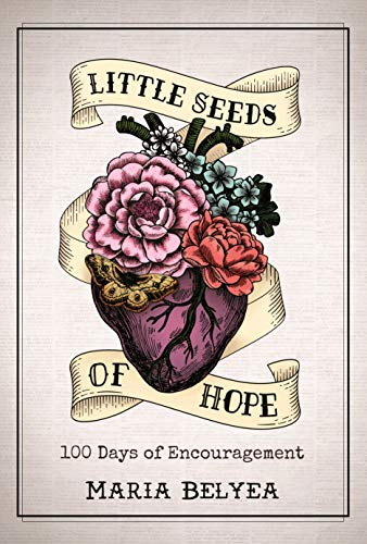 Little Seeds of Hope - 100 Days of Encouragement (English Edition)
