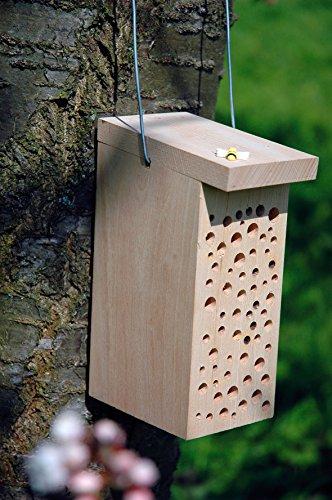Buchen-Tower für Wildbienen - 2