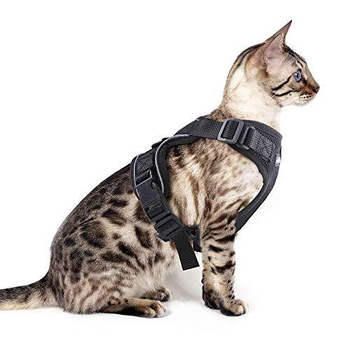 Eagloo Geschirr für Katzen Katzengeschirr Kleine Katze Katzengarnitur Ausbruchsicher Welpengeschirr Soft Kaninchengarnitur Katzenweste Verstellbar Schutz Kitten Hunde Cat Harness Upgrade Schwarz XS