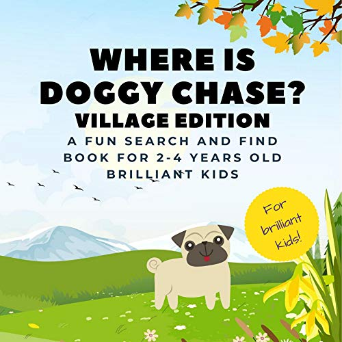 Where Is Doggy Chase? Village Edition: A Fun Search And Find Book For 2-4 Years Old Brilliant Kids | Look Seek And Find A Hidden Dog (English Edition)