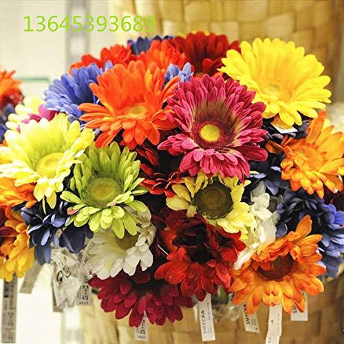 Aerlan Exotische winterharte mehrjährige Blumensamen,Gerbera-Blumensamen blühen 20 Kapseln in Vier Jahreszeiten-Mixed Color_10 Packungen
