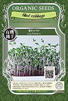 赤 キャベツ/有機 種子 固定種/グリーンフィールド/スプラウト [中袋]