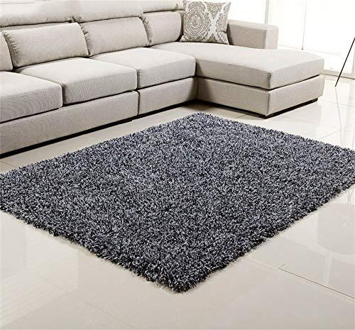 ZHAOJDT Huisdecoratie Moderne eenvoudige lange haren dikke carpet woonkamer sofa koffie bed slaapkamer nacht huis tapijt (140 * 200 cm) vloermat uit de regio 120*170cm Gary1.