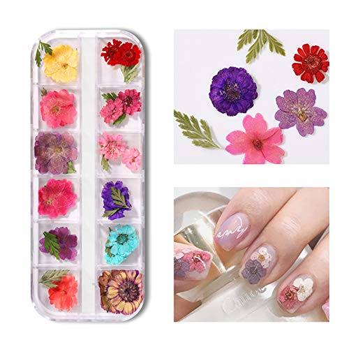KTOO 1 Box Mixed Dried Flowers Nail Art Decoration Natural Floral Sticker 3D Dry Beauty Nail Art Decals Jewelry UV Gel Polish Manicure3D Dry Beauty Nail Art Decals