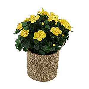 House of Silk Flowers Artificial Hibiscus in Seagrass Basket (Yellow)