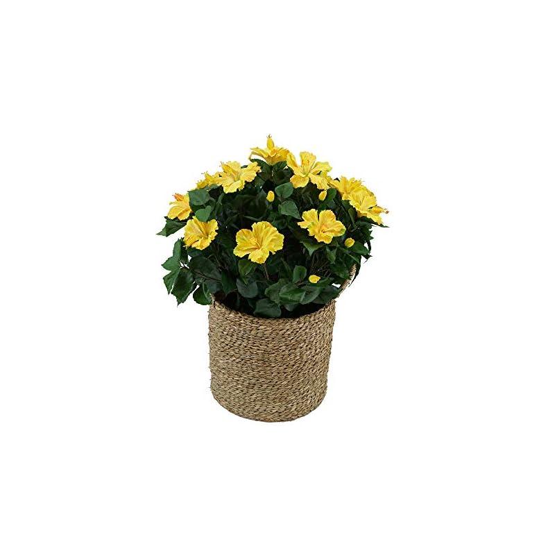 silk flower arrangements house of silk flowers artificial hibiscus in seagrass basket (yellow)