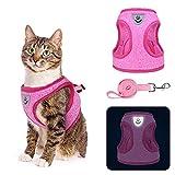 Ensemble harnais et laisse pour chat – Gilet réfléchissant anti-évasion, doux, respirant, léger pour chats, chatons, promenade en plein air