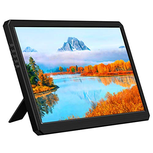 10 Inch HDMI Monitor,1366X768 IPS HDMI Type C Portable Gaming Display Compatible with Raspberry Pi...