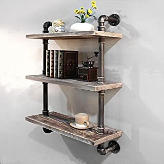 Industrial Pipe Bookcase Wall Shelf,Rustic Floating Wood Shelves Shelving (24'')