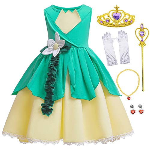 Princess Costume Birthday Halloween Party Dress for Toddler Girls 5-6 Years (5T 6T)