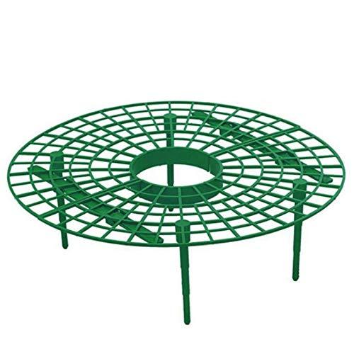 WWVAVA Herramienta de plástico para plantas de fresas, soporte de círculo, marco de agricultura, jardinería, plantas, jaulas, suministros de jardín, 3 unidades