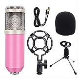 Kit de micrófono de sonido de condensador profesional Conferencia Karaoke Micrófono dinámico Cable de micrófono con montaje de choque talla única 2