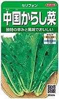 サカタのタネ 実咲野菜3376 中国からし菜 セリフォン 00923376