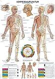 """Lehrtafel""""Körperakupunktur"""", 50x70cm -"""