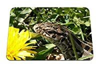 22cmx18cm マウスパッド (トカゲ草花頭) パターンカスタムの マウスパッド