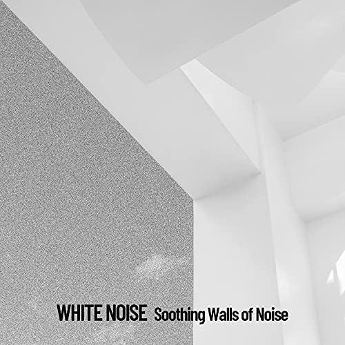 White Noise Studios, Studying Music & Brainwave Samples