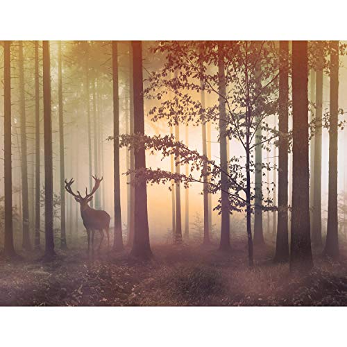 Fototapete Wald Hirsch - Vlies Wand Tapete Wohnzimmer Schlafzimmer Büro Flur Dekoration Wandbilder XXL Moderne Wanddeko - 100% MADE IN GERMANY - 9338010c